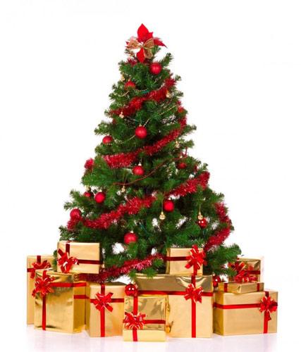 Distribution des sapins de Noël @ Place de la Fontaine